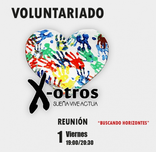 Voluntariado: Reunión