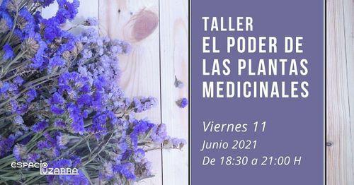 Taller: El poder de las plantas medicinales